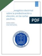 Investigacion Exegetico Predestinacion y Eleccion