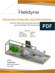 White Paper NGL Gas Processing REV.1