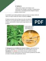 El consumo de tabaco.pdf