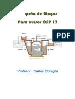 Biogas. Curso energias renovables uocra