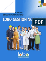 Lobo Gestion Nominas