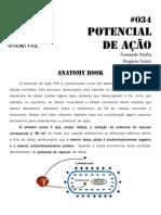 034-Anatomy-Book - Potencial de Acao