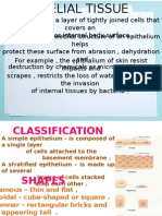 Anatomy - tissue.pptx