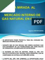 FIGAS 2011 Mercado Interno Gas Garcia