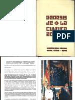 Genesis Cultura Andina