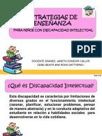Diapositivas discapacidad Intelectual.pdf