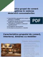 Caracterisdtica Grupul de Comert (6)