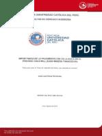 Poma Jose Fragmentacion RocaSSS (1)