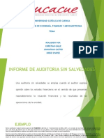 Audit Informes
