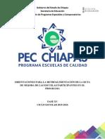 Manual Primera Capacitación Pec 15