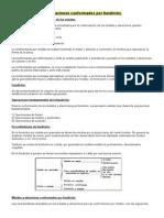 LASHERAS (1).pdf