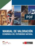 Manual Valoración 14-10-15 Ok