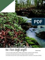 scozia_giardinaggio_01-08articolo.pdf