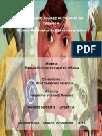 20.RESUMEN -México-Programa Especial de Educación Intercultural