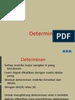 Determinan ES