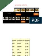 CURVA BASICA DE TOSTION Y TOSTADOS (Presentación Harvest).pdf