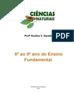 Apostila Ciencias Naturais Do 6º Ao 9º Ano - Ensino Fundamental - Profª Analina V