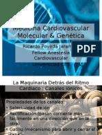 Cardiovascular Molecular Medicine & Genetics