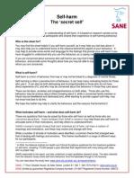 SANE - The Secret Self