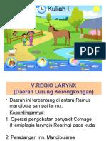 Regio Larynx