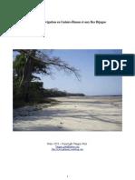 Guide Guinée Bijagos