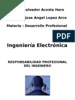 Responsabilidad Profesional Del Ingeniero