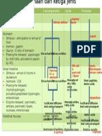 GIT  fisiologi