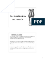Tendon Deformación