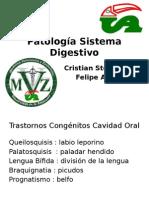 PatoLogia Sistema Digestivo