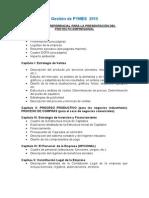 Estructura Del Plan de Negocio 2015