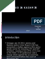 Tax Fraud in Kashmir