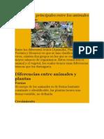 Diferencias Principales Entre Los Animales y Las Plantas