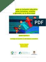 modulo_opt9_mex diplomado inclusion educ.pdf