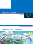 Cicluri naturale