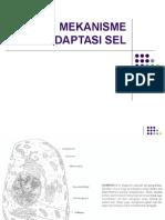 MEKANISME ADAPTASI & KEMATIAN SEL.ppt