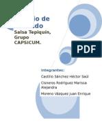 TEPIQUIN FORMULACION CASICOMPLETO.docx
