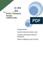 8-EM-TEPIQUIN-REVISADO.docx