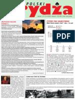 ŚB_dla Witka.pdf