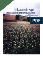 Industrializacion de Papa (1)3