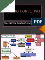 TEJIDO CONECTIVO.pptx