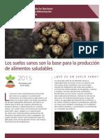 Los suelos son la base para la producción de alimentos saludables