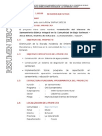 1.0. Resumen Ejecutivo s.b.i. Bajo Korimani