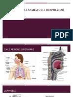 Semiologie Aparatul Respirator