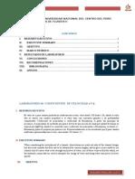 INFORME N°6 LABORATORIO.docx