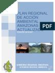 Plan de Accion Ambiental Amazonas (1)