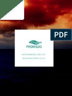 Informe Del Sector Gas Natural 2014