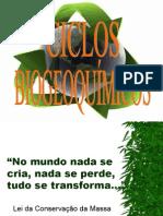 CICLOS-BIOGEOQUIMICOS-2013