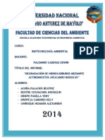 hidrocarburos informe