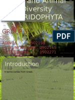 Group 5_Pteridophyta.pptx