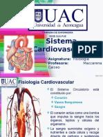 2.1 Sistema Cardiovascular